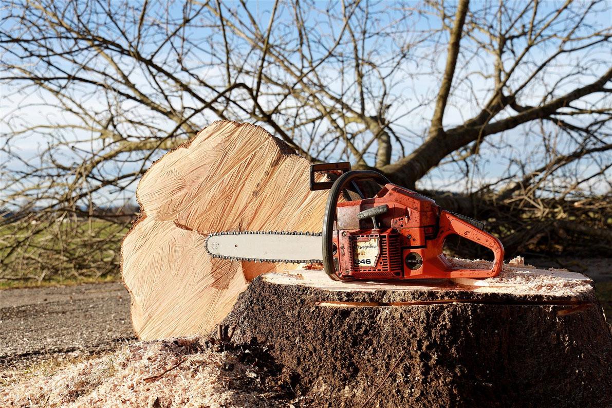 chainsaw-4815949_1920