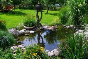 garden-pond-823722_1920